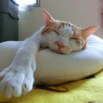 赤ちゃんが寝てくれない4つの原因と対策法