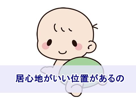 sakago02